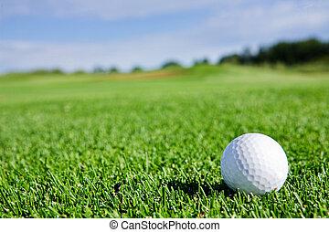 Golf Ball - A golf ball sitting on a fairway