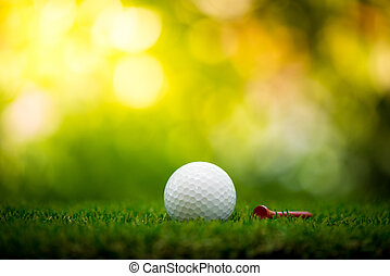 golf ball with tee on fairway