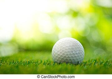 golf bold, på, fairway