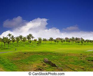 golf,  canaria, verde,  gran, erba,  meloneras