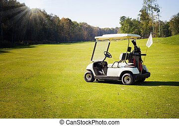 Golf-cart car on golf course