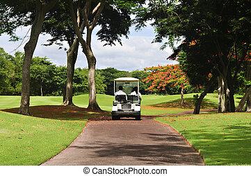 Golf Cart - Male and female golfers in golf cart