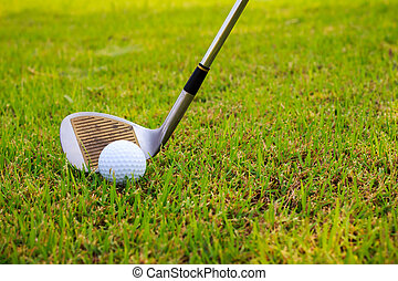 Golf club and ball in grass