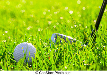 golf club and ball in the field