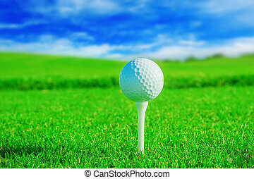 Golf club. Green field and ball in grass