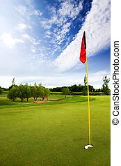 Golf Course - A very close hole in one