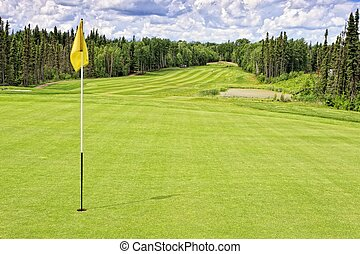 Golf Course Fairway - Golf course in the thick forest at Elk...