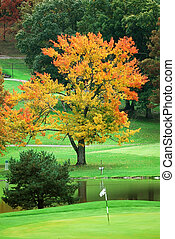 Golf course green in autumn.