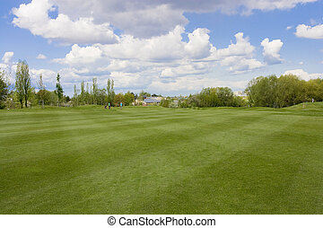 golf course - Golf course with golf hole and flag