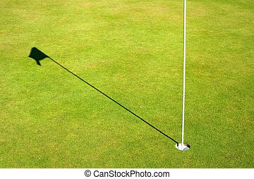 Golf course green grass background with cup