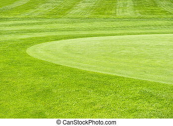 golf course. green grass field background