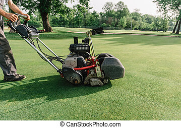 Golf course maintenance equipment, greens mower