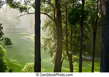 Golf course on foggy morning