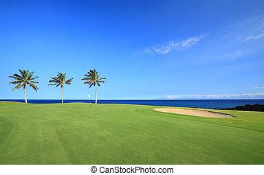 Golf Course on Ocean Coast - Green Hawaiian Golf Course on...