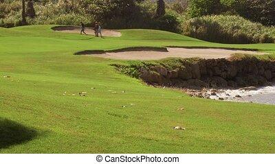Golf course tropical island sports