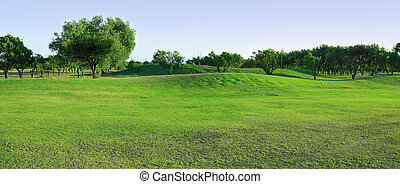 Golf-course with olive trees