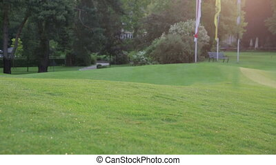 golf course with sunlight - a golf course on a sunny day in...