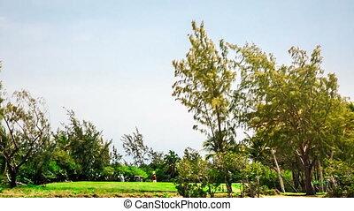 Golf court in Mauritius Ile aux Cerfs