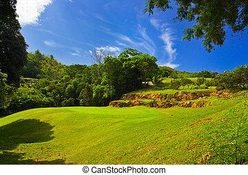 Golf field at island Praslin, Seychelles - nature background