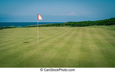 golf flag and green