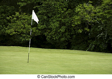 Golf flagpole - Flag pole on a golf green