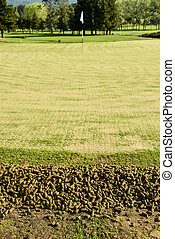 Golf green during aeration process showing cores - A pile of...
