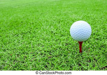 golf- kugel, auf, a, tee, in, grünes gras, kurs