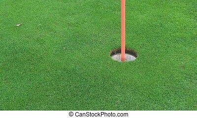 golf- kugel, gehen, in, der, loch