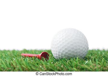 golf- kugel, mit, tee