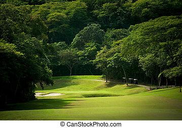 golf kurs, fairway, hos, tropisk, tilholdsted