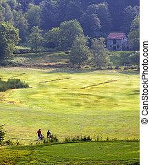 golf, mező