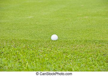 Golf on green grass field