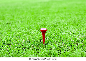 golf pegs on a tee in green grass course