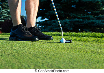 Golf player putting on the green