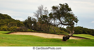 Golf, sand bunker and tree at green