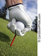 golf tee, placerande, boll