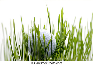Golf - White golf ball in the middle of green grass