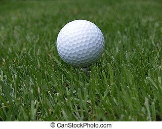 Golfball - a white golf ball on a tee