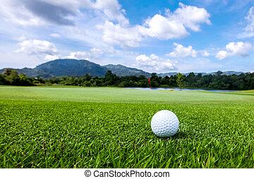 golfball, auf, kurs