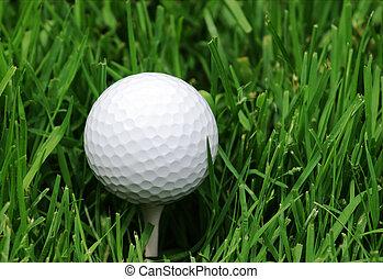 Golfball grass