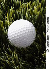 Golfball resting in grass.