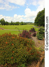 Golfcourse - A view of a golfcourse with plants and shrubs...