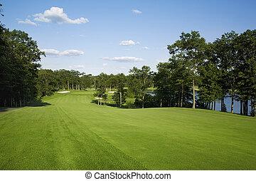 golfe, fairway, alinhado, com, árvores, perto, lago