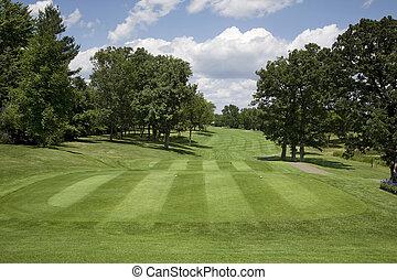 golfe, fairway, com, árvores, ligado, dia ensolarado