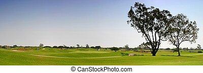 golfe, fairway
