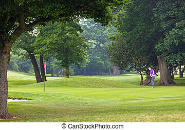Golfer chipping onto the green - Golfer chipping onto the...