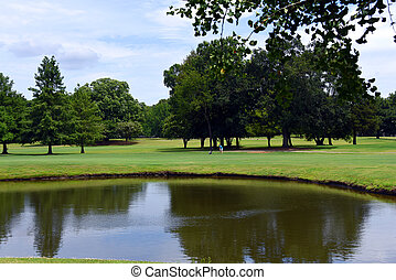 Golfer Hitting Ball on Course in Memphis Tennessee