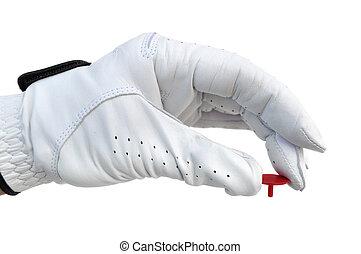Golfer Holding a Ball Marker - Golfer Wearing Golf Glove...
