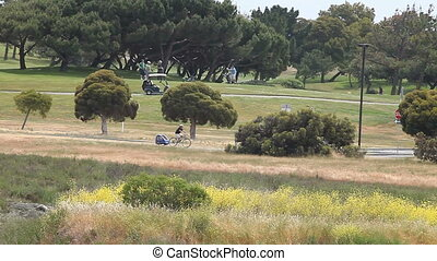golfers and bicyclists in the park