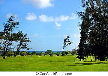 Golfing on Island of Kauai Hawaii